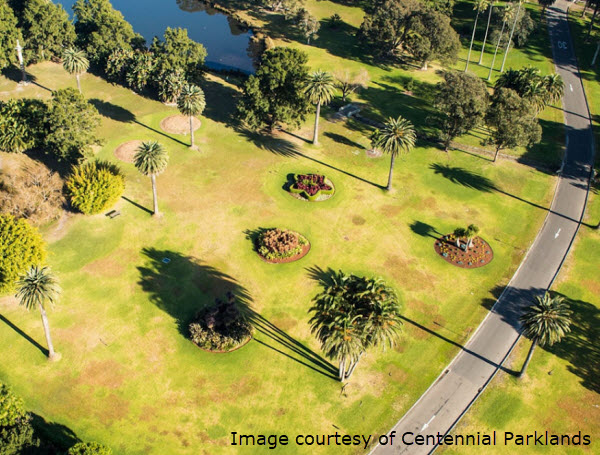 Vetaround - Centennial-Parklands