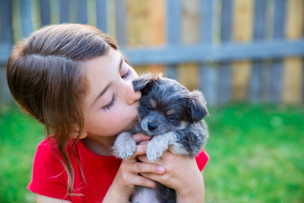 The cute girl and her charming puppy