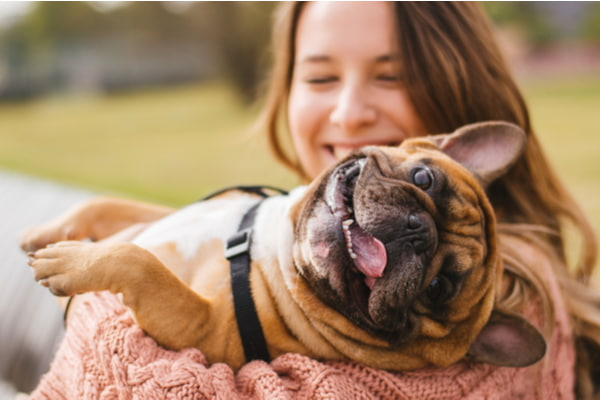 Three Key Ways Pets May Benefit Our Mental Health